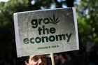 With an estimated 129 million people or more using cannabis, legalising it would be likely to produce a tax bonanza. Photo / AP