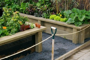 Raised timber beds filled with straw and compost are ideal for growing vegetables. Photo / Supplied