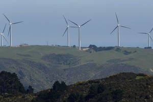 The turbines at Makara must stand up to winds of 'Formula One' intensity, says the site's maintenance manager. Photo / Mark Mitchell
