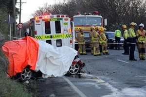 Liam Stevenson crossed the centre line in his car and smashed into a truck. Photo / Otago Daily Times