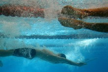 The role of Swimming NZ's high performance manager Jan Cameron has come under particular fire in a new report from Sparc. File photo / Brett Phibbs