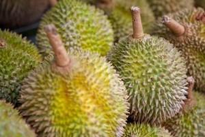 Durian fruit smells like sewers and tastes like microwaved socks. Photo / Derek Cheng