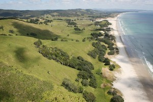 Part of the proposed 11km park which takes in Pakiri and Te Arai beaches. Photo / Greg Bowker