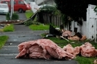 Debris from the tornado on Lemon St, New Plymouth. Photo / Christine Cornege