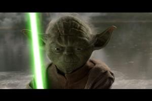 Yoda stays in Mantrol. Photo / Supplied
