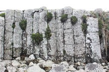 Basalt rock columns at Ohio Bay on Chatham Island. Photo / Jim Eagles