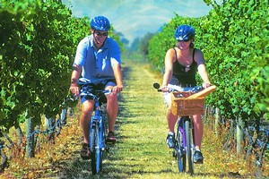 On Yer Bike Winery Tours offer a different way to explore Hawkes Bay. Photo / Supplied