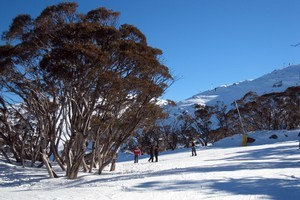 Perisher is one of the most popular New South Wales ski resorts. Photo / AAP