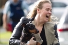 An elated Dexter is reunited with his owners' daughter, Lydia Hood. Picture / Richard Robinson