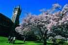 Clock tower at Otago University. Photo / supplied