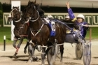 New Zealand fans could be in for more interdominion excitement as provided here by Smoken Up (centre) this year. Photo / Natalie Slade