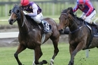 Montjee (left) is almost an anchor in the first leg at Te Awamutu today. Photo / APN