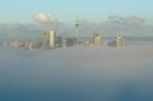 Fog over Auckland City viewed from Mt Victoria, Devonport. Photo / Brett Phibbs