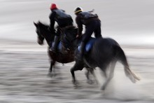Wellington Hurdles runner Seeking The Silver (right) gets in some beach practice for a heavy Trentham track on Saturday. Photo / APN