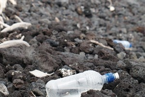 Most of the rubbish found on our coasts is from household consumers. Photo / Supplied