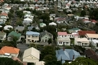 In Greater Auckland, values are 1.4 per cent above last year. Photo / Chris Skelton