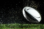 This year, the Blossom Festival will feature a three-storey rugby ball made of grass. Photo / Thinkstock