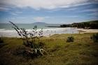 Tawharanui Regional Park. Photo / Dean Purcell