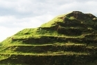 Matukutureia Stonefields and McLaughlin's Mountain, Wiri. Photo / Supplied