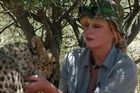 Joanna Lumley meets a cheetah in the next episode of her show about cats. Photo / Supplied