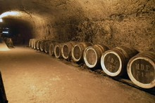 Caves Duhard wines can be stored for years in Loire Valley caves. Photo / PK Stowers