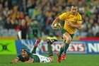 Quade Cooper must be hassled out of his rhythm in a match which will have ramifications for later in the year. Photo / Getty Images