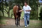 Trainer John Bary with race horse Jimmy Choux. Photo / Natalie Slade