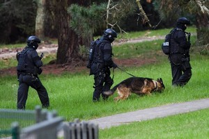 Armed Offenders Squad. File photo / NZ Herald