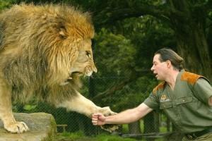 Lion Man Craig Busch's animal welfare credentials have been called into question. Photo / Brett Phibbs