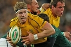 The Wallabies eased by the Springboks on Saturday. Photo / Getty Images