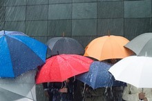 In the previous six months, rainfall was above average every month, especially in April and May. Photo / Thinkstock
