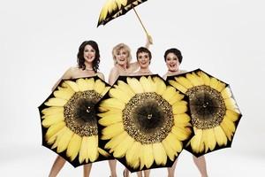 Theresa Healey, Jennifer Ludlam, Hera Dunleavy and Kate-Louise Elliott are the Calendar Girls. Photo / Supplied