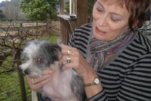 Carol Wood is thrilled to have Mitzi back home after she was stolen last year. Photo / Supplied