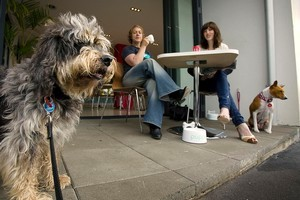 Grey Lynn's discerning canines get to know the smell of a decent espresso. Photo / Adrian Malloch