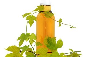 Too much hops and alcohol makes beer undrinkable. Photo / ThinkStock