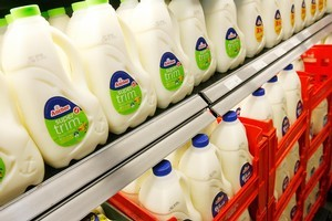 The Government has confirmed it will back a parliamentary inquiry into the price of milk in New Zealand. Photo / Greg Bowker