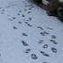 A snowy scene taken from Marton. Photo / Pam Bradley