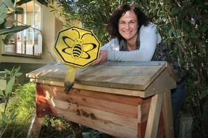 Janet Luke with an urban bee hive. Photo / Hawke's Bay Today