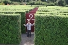 The aMAZEme hedge maze proved plenty of fun for the whole family. Photo / Alex Tully