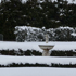 Snow outside an nzherald.co.nz reader's home in Oxford, North Canterbury. Photo / Monese Ball