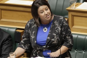 Social Welfare Minister Paula Bennett. Photo / Mark Mitchell