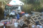 A truck driver died in this crash on State Highway 27 in the Waikato just before midnight last night. Photo / Christine Cornege