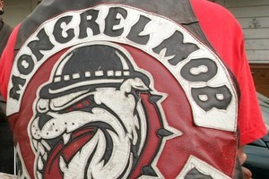 Police say it was a miracle nobody was hurt or killed when a Mongrel Mob member fired a shotgun into a crowd after a rugby match at Wairoa on Saturday. Photo / NZ Herald