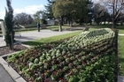 Flower beds liven up the town of Masterton. Photo / File