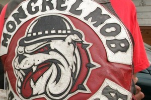 A Mongrel Mob member accused of firing a shotgun at a rugby match has surrendered to police.