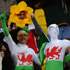 Fans are excited for the South Africa v Wales Rugby World Cup match in Wellington. Photo / Getty Images