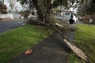 The scene at Riversdale road in Avondale that was struck by a Tornado on Sunday afternoon. Photo / Richard Robinson