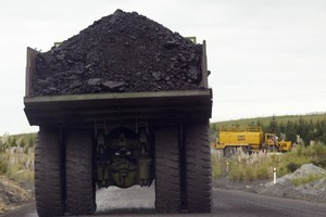 The Government has been criticised for promoting coal and lignite use. Photo / Greg Bowker