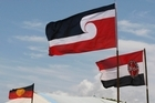 Maori flags flying at a Dunedin school, like these seen here at Te Tii Waitangi Marae, outraged an Otago businessman who forwarded an email to the school to complain. Photo / NZ Herald