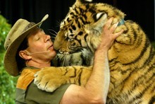 Craig Busch  - the 'Lion Man' - at the Zion Wildlife Park, where the future of 36 big cats at the park are to be considered at an urgent hearing. Photo / APN
